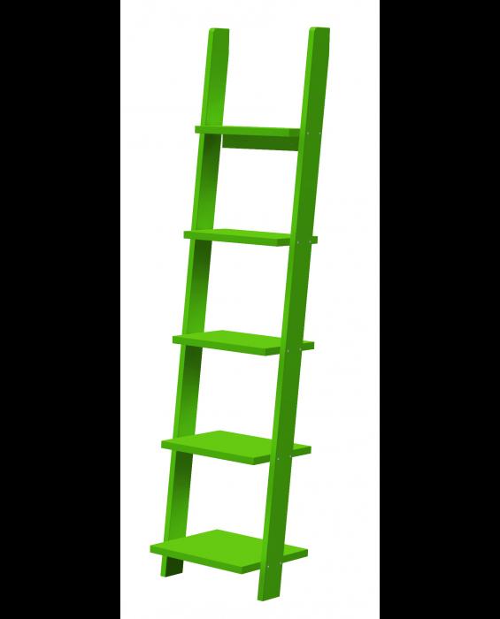 Pisa - Bücherregal - Grün